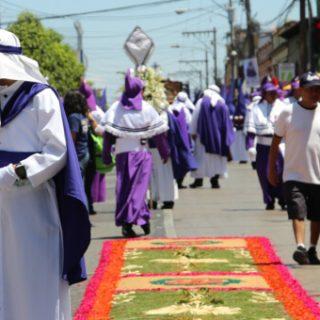 Purple Culture
